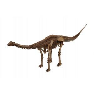 Wood Models Diplodocus