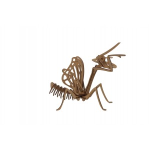 Wood Models Mantis Religiosa
