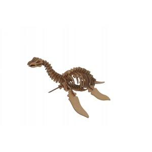 Wood Models Plesiosaurus