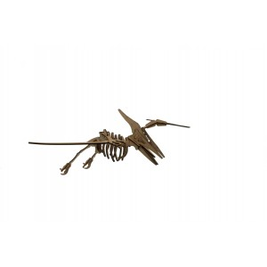 Wood Models Pteranodon